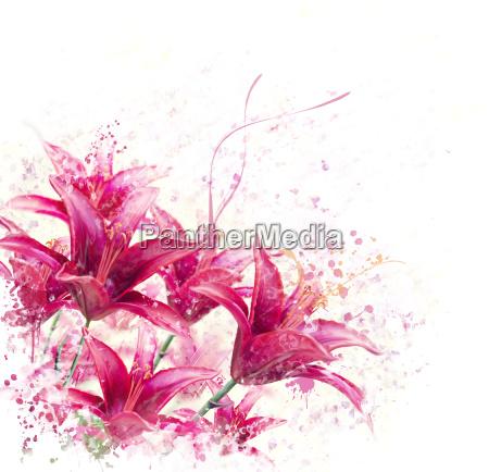 rote lilien blumen aquarell