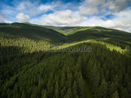 aerial view of mountains covered with