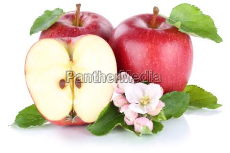 apple apples red fruit fresh fruits