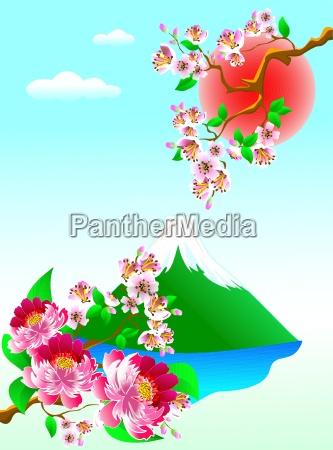 blume blumen pflanze kirsche gebirge berg