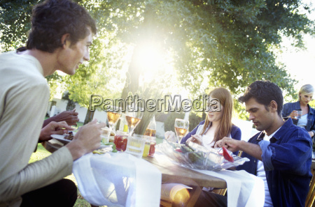 group at outdoor dinner party