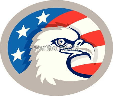 bald eagle kopf usa flaggen oval