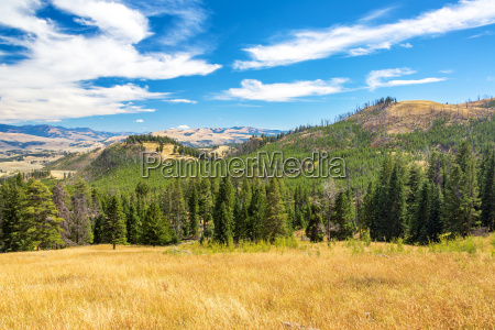 landscape in yellowstone national park