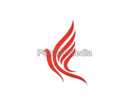 falcon logo template