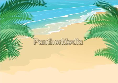 sommer strand palmen