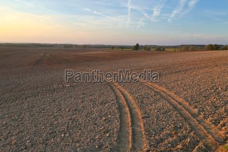 agircutural field in late sunlight