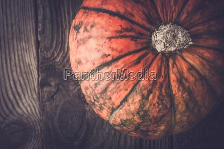 orange pumpkin with green stripes top