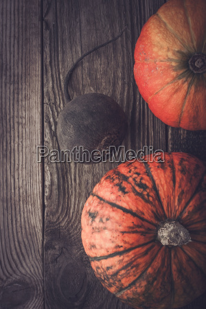 turnip and two pumpkins on the