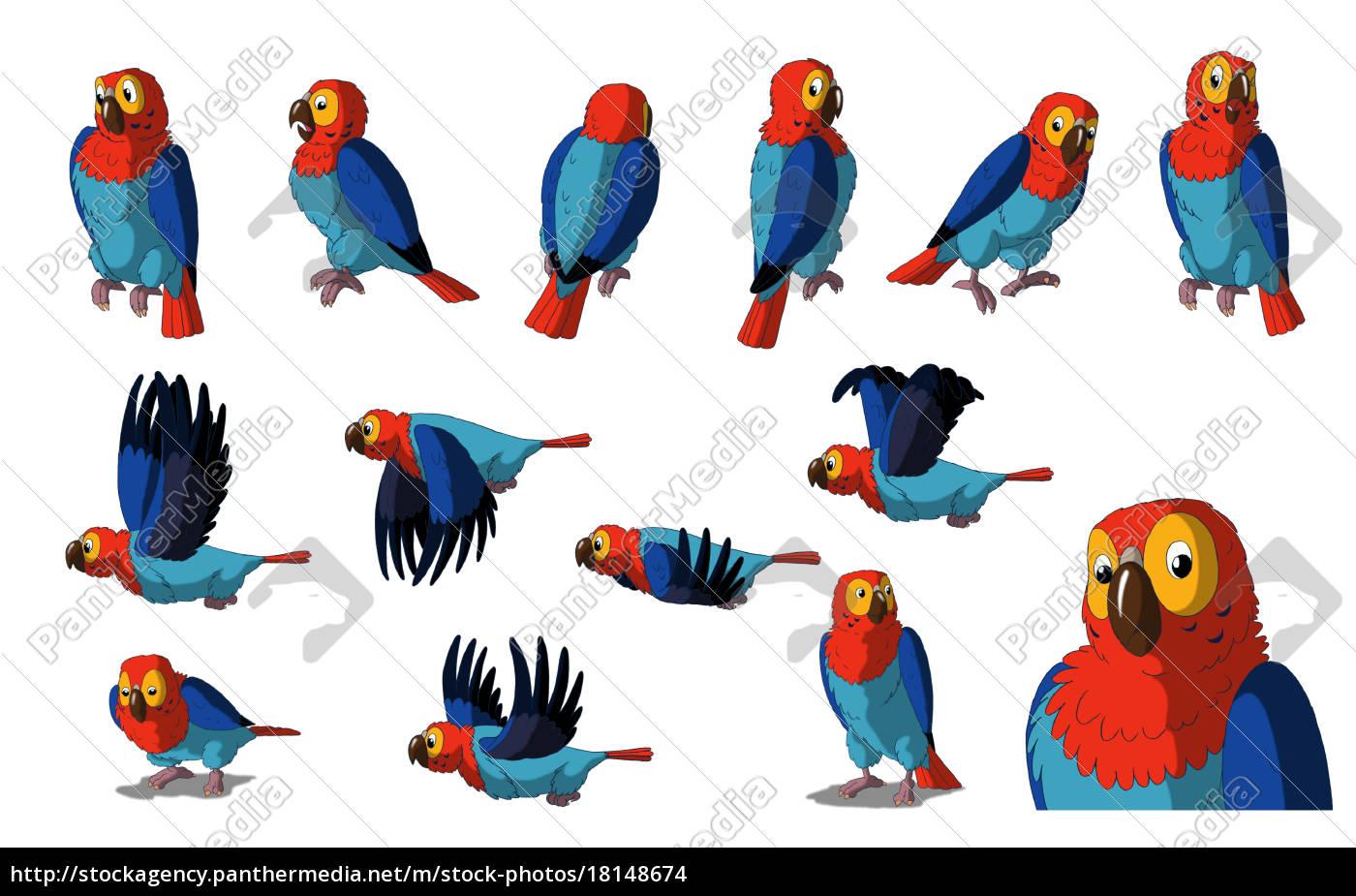 ara-papagei, getrennt, auf, weißem, hintergrund - 18148674