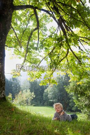 boy lying under a tree