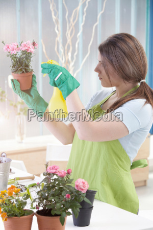 woman watering potted plants indoors