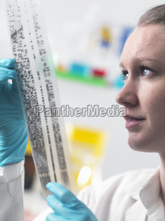 scientist holding dna autoradiogram in laboratory