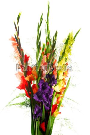 komposition mit strauss gladiolen blumen