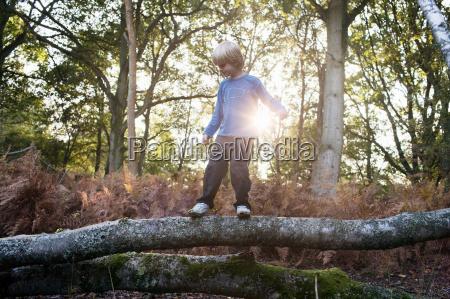 boy on fallen tree