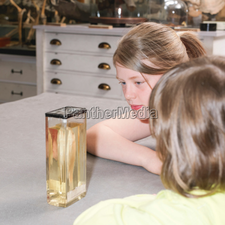 teenagers looking at fish in museum
