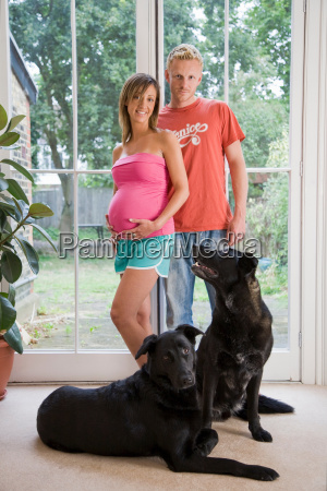 caucasian pregnant couple and dogs