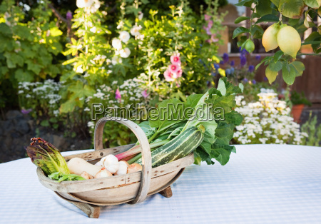 basket with fresh vegetables on table