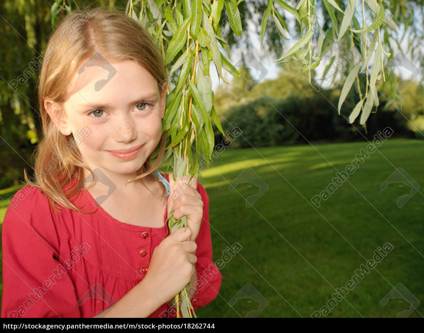 young, girl, pulling, on, branch - 18262744