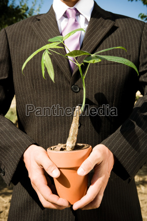 pair of hands holding potted plant
