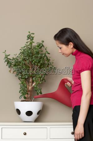 businesswoman, watering, plant - 18271170