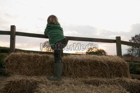 boy climbing on hay bales