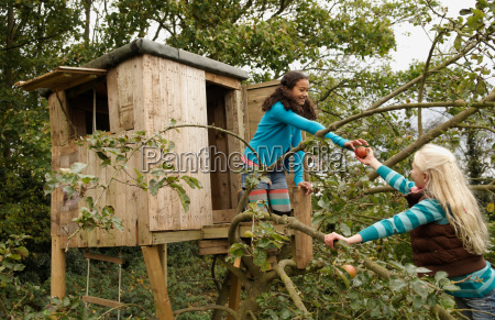 girl in tree passing apple to