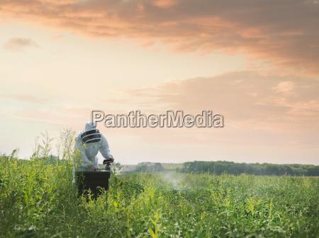 umwelt risiko landwirtschaft ackerbau feld outdoor