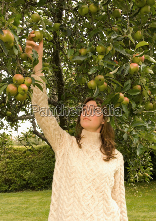 a female picking an apple from