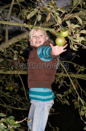 young girl picking apple