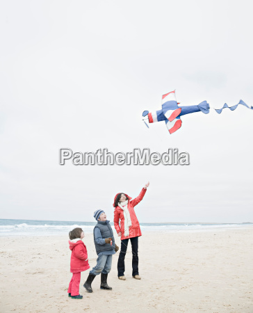 people on beach with kite