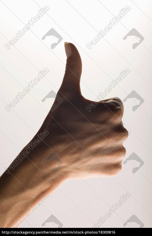 handgeste, die, die, zustimmung, anzeigt - 18309816