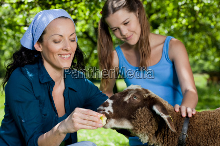 mother and daughter feeding sheep