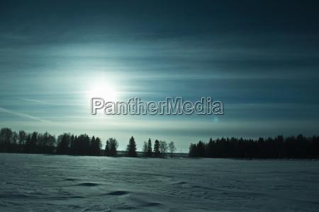 fahrt reisen baum winter abend sonnenlicht