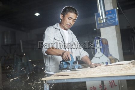 carpenter cutting wood plank in factory