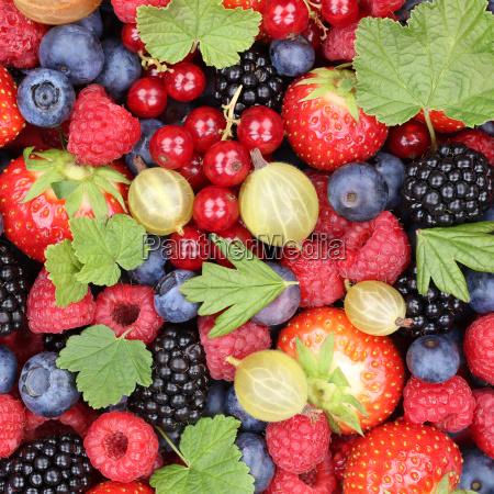 berry fruits berry fruit strawberries raspberries