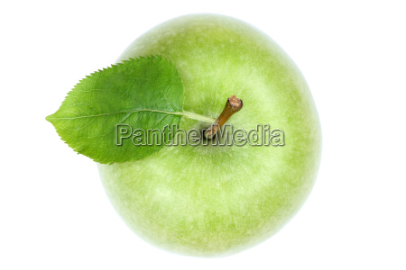 apple fruit fruits isolated green exempted