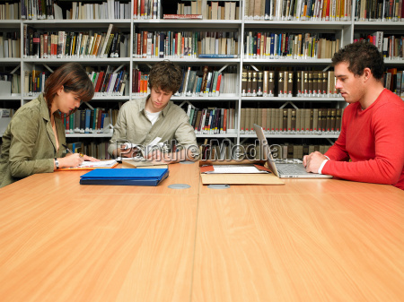 young people studying in library