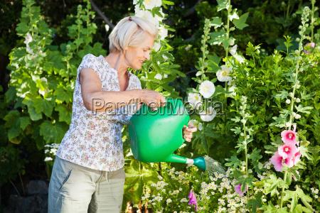 mature woman watering plants in garden