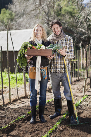 couple picking vegetables in garden