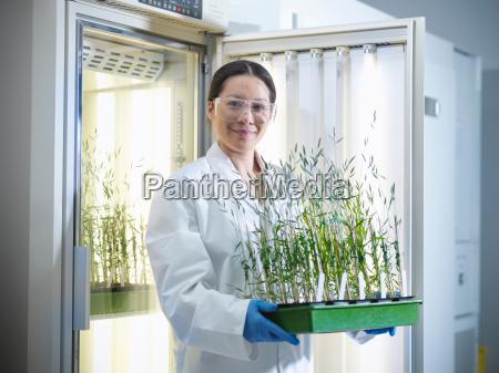 portrait of scientist holding plant cultures