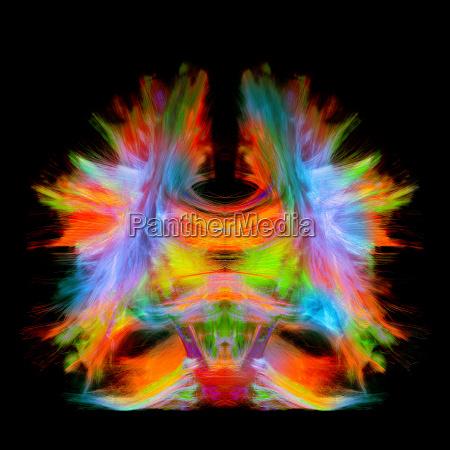 menschen leute personen mensch kunst farbe