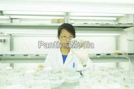 frau experiment weiblich wissenschaft befoerderung blick
