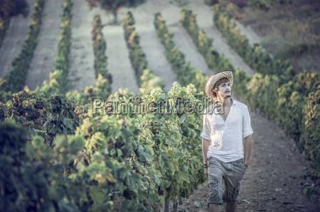 viticulturist working in vineyard cagliari sardinia