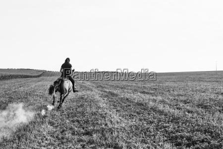 frau freizeit lebensstil weiblich pferd ross