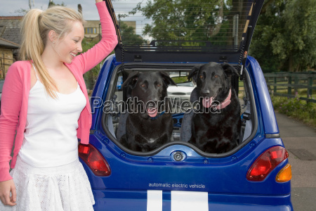 young woman putting dogs in electric