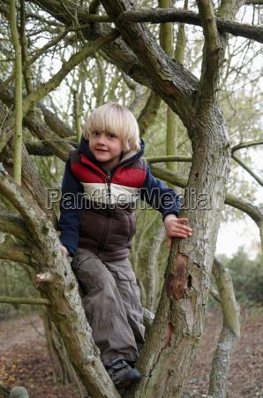 boy climbing tree branches