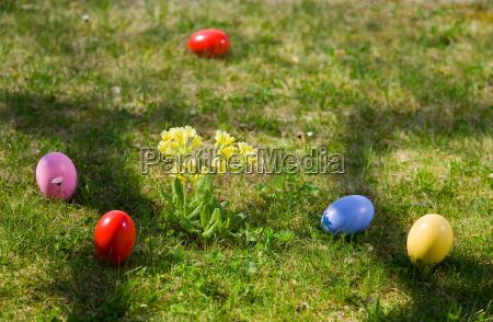 ostereier, frühlingsblumen, im, gras - 18424114