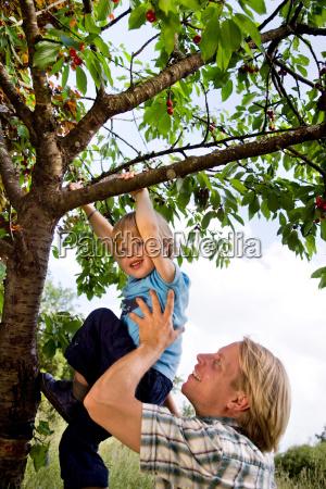 man helping son to climb tree