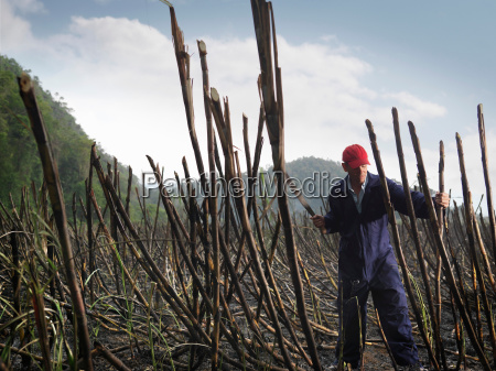 gefahr gefahren gefaehrdung landwirtschaft ackerbau heiss