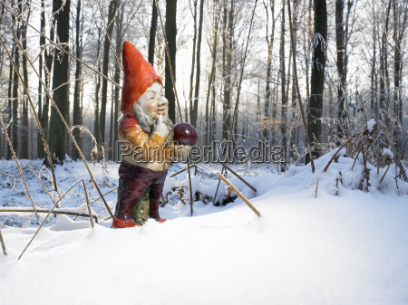 garden gnome in the woods snow